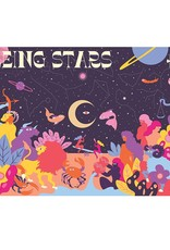 Chronicle Books Puzzle: Seeing Stars (1000 Pieces)