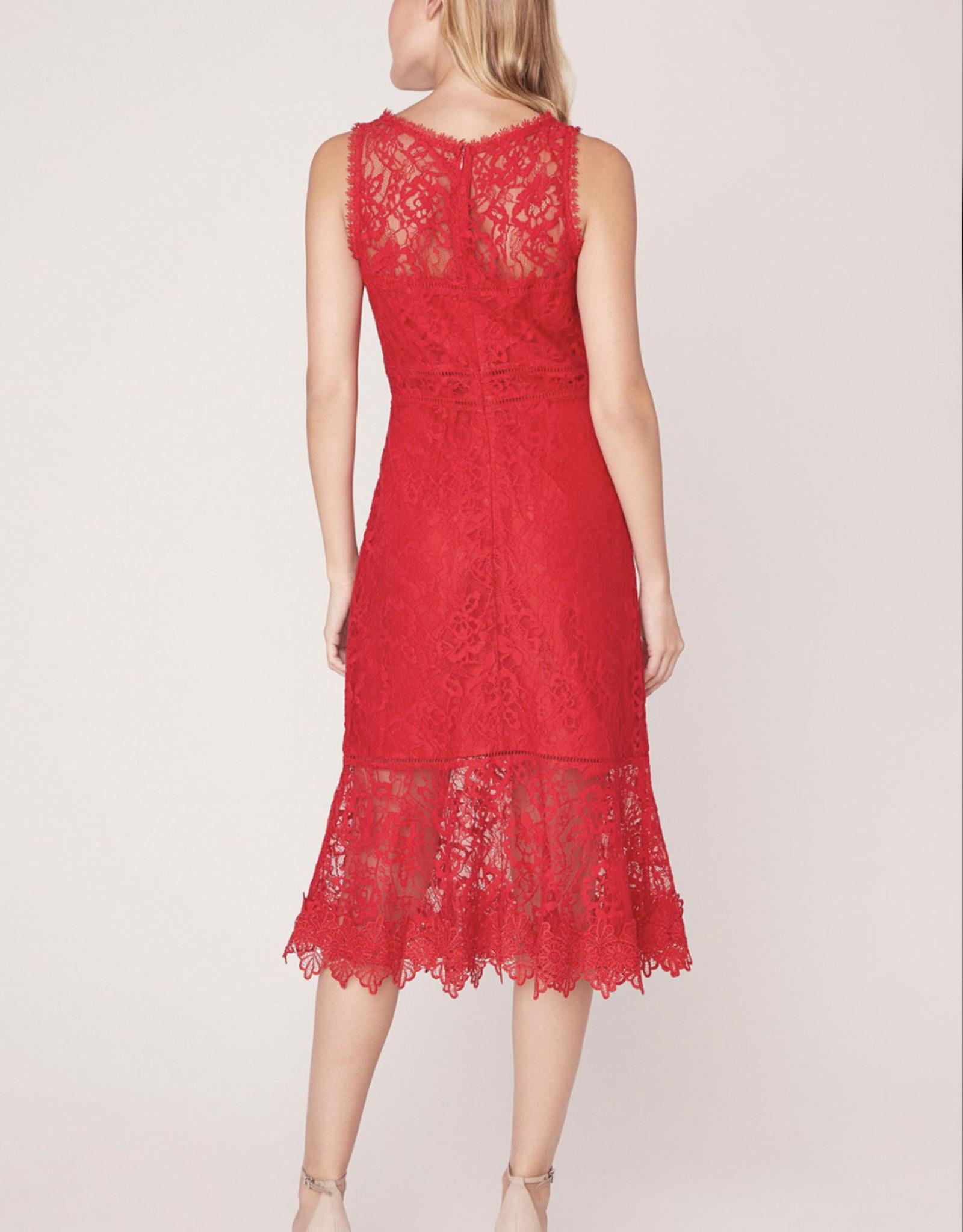 BB DAKOTA Hearing Sirens Dress, Red lace
