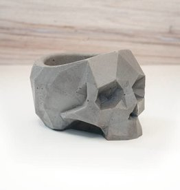 LeBLANC finds Geometric Skull Vessel