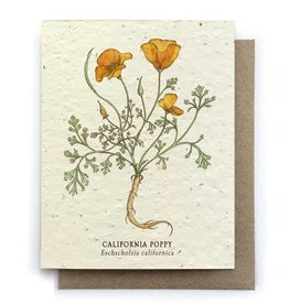 LeBLANC finds California Poppy Greeting Cards - Plantable Seed Paper