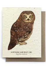 LeBLANC finds Owl Bird Greeting Cards - Plantable Seed Paper