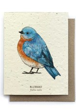 LeBLANC finds Bluebird Bird Greeting Cards - Plantable Seed Paper