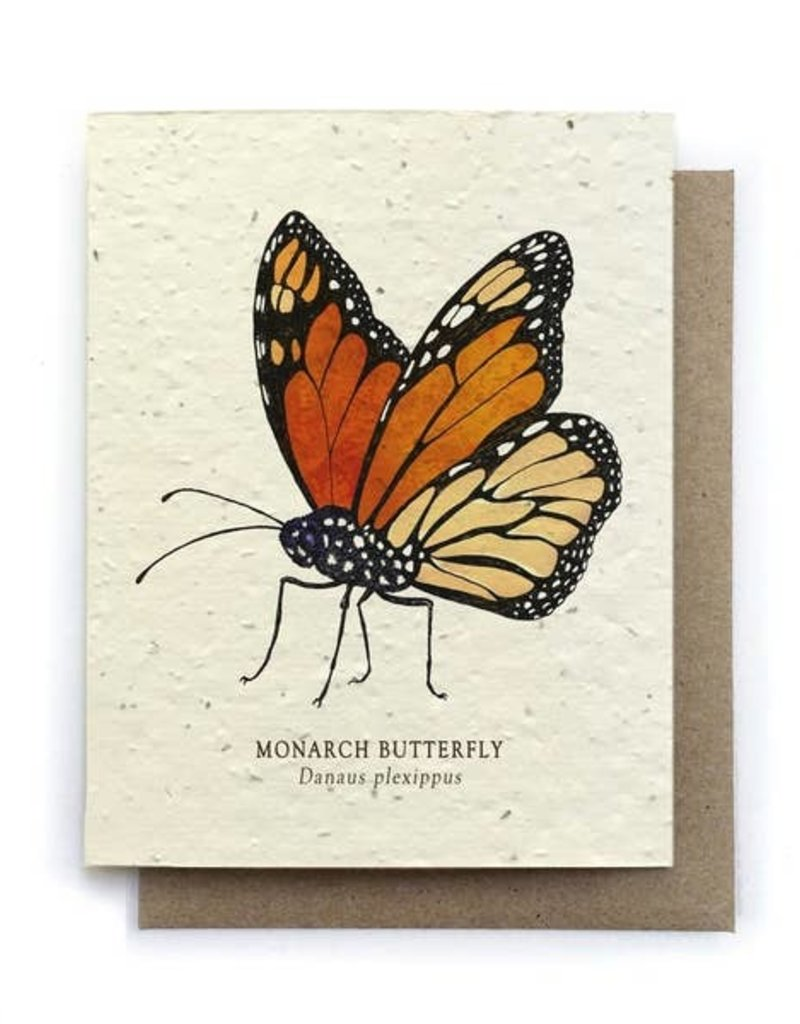 LeBLANC finds Monarch Butterfly Greeting Cards - Plantable Seed Paper