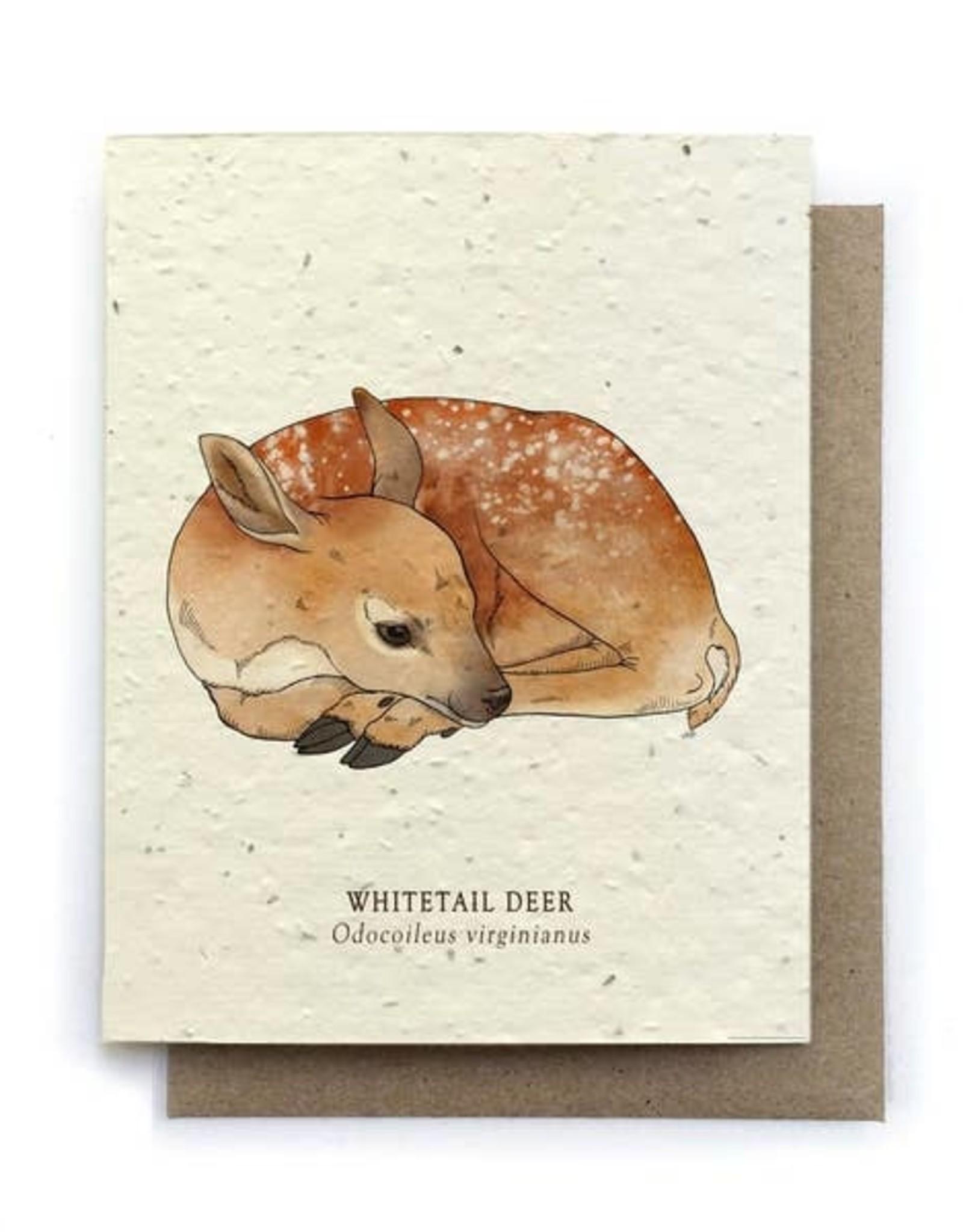 LeBLANC finds Deer Animal Greeting Cards - Plantable Seed Paper