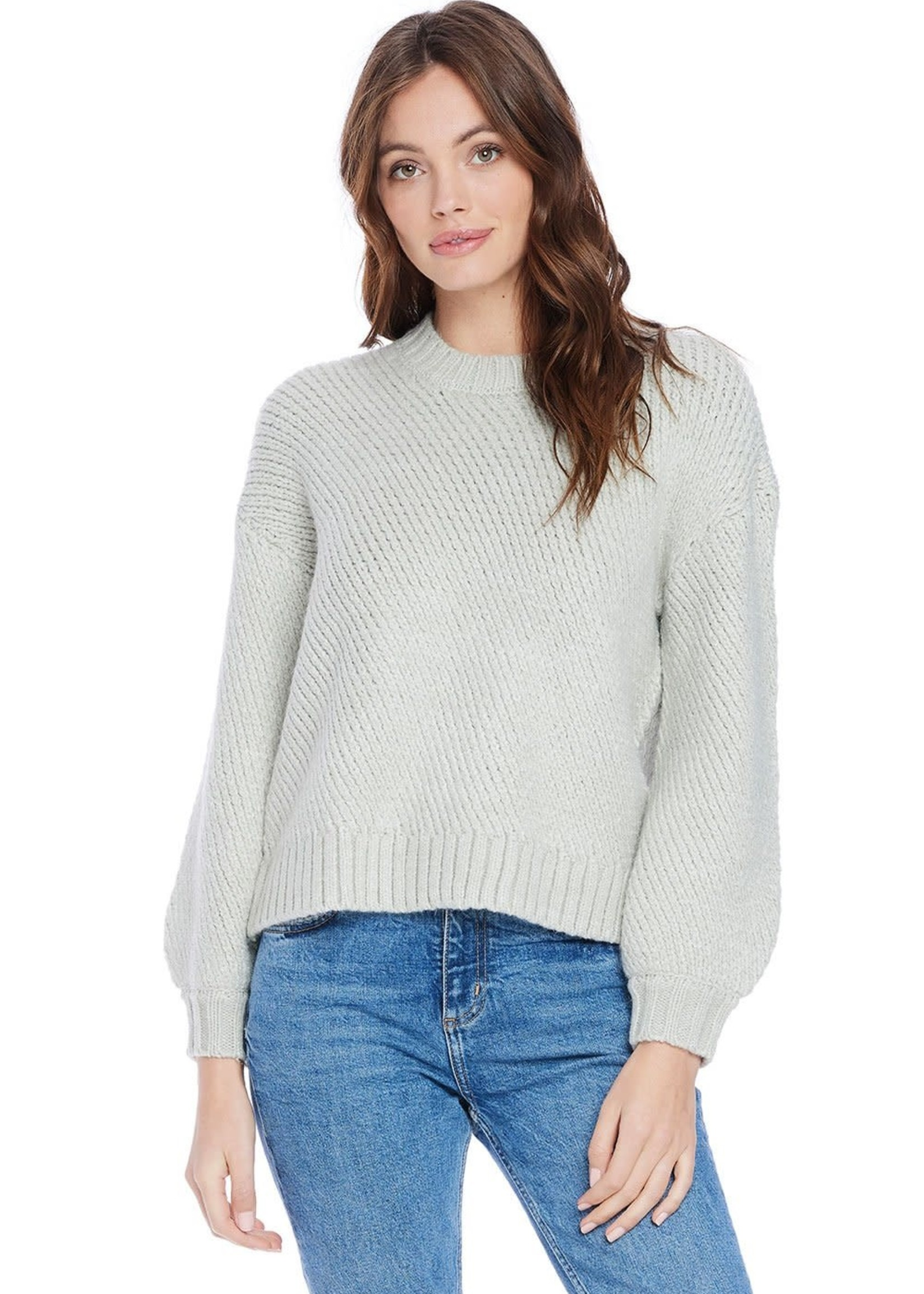 SALTWATER LUXE Payton Chunky Knit Sweater