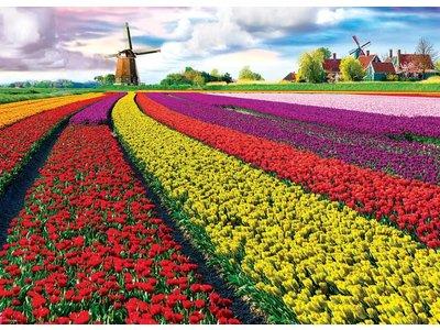 Games Puzzle Holland Tulip Fields 1000 Pcs