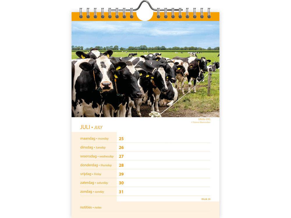 Holland 2022 Calendar 6.5x9
