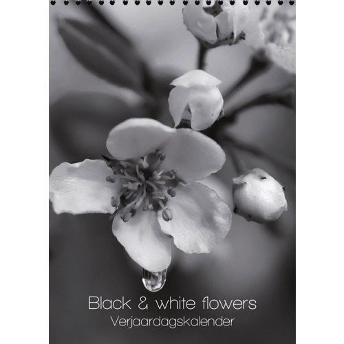 Calendars Black & White Flowers Birthday Calendar 7x9.8