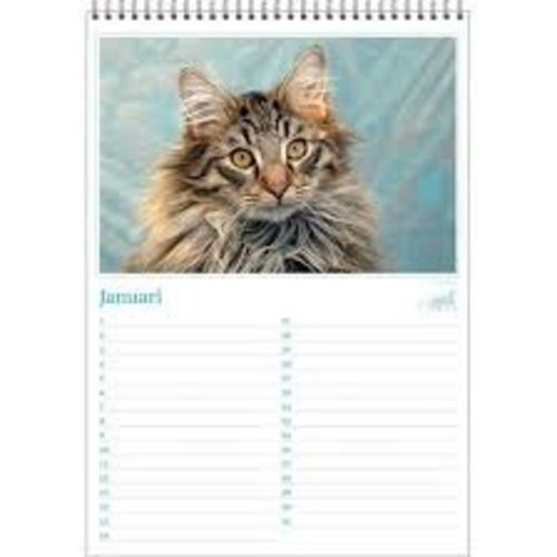 Cats photos Birthday Calendar