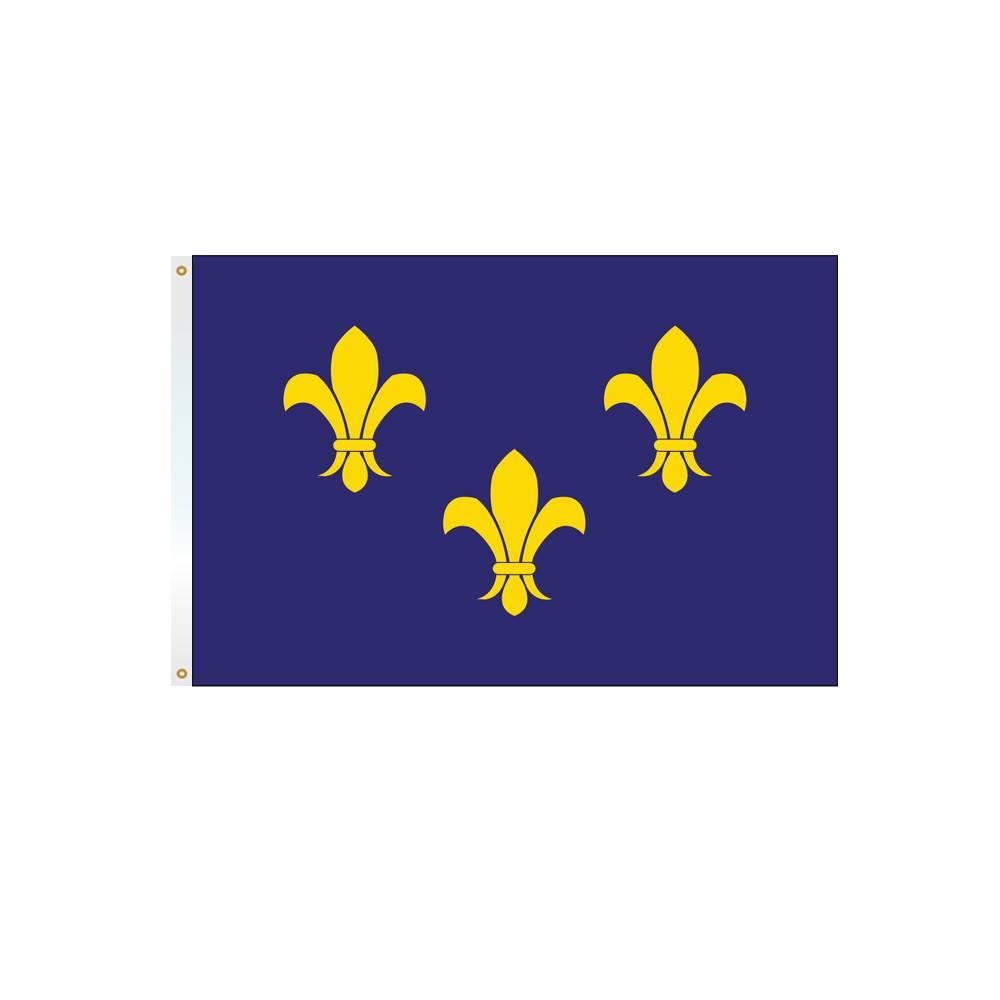 3x5 ft. Fleur-di-Lis Flag