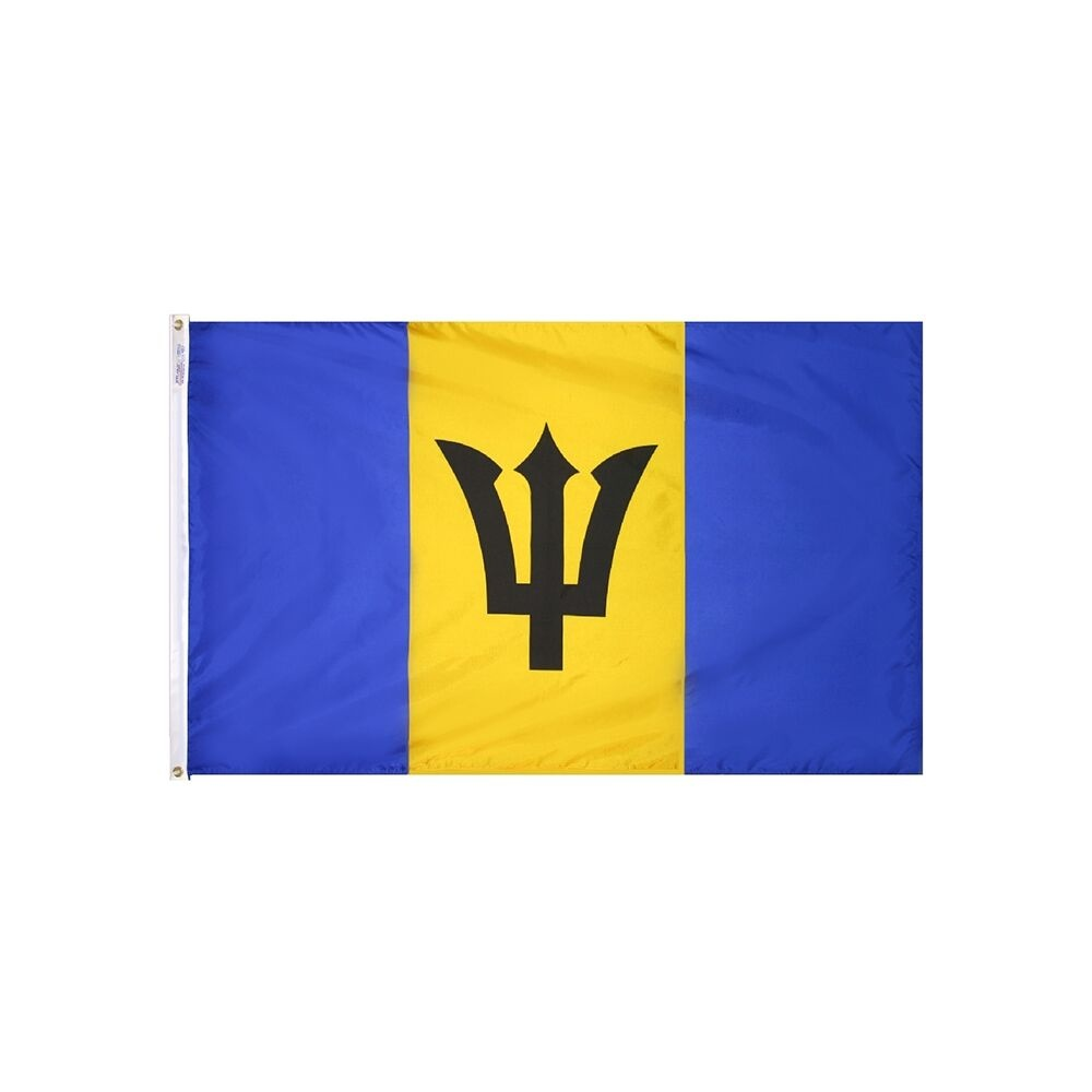 12x18 in. Barbados Nautical Flag