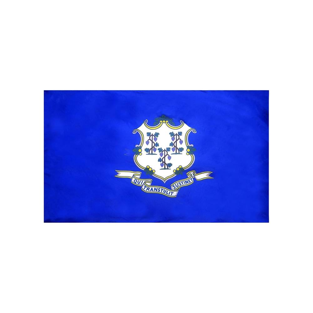 Connecticut Flag with Polesleeve