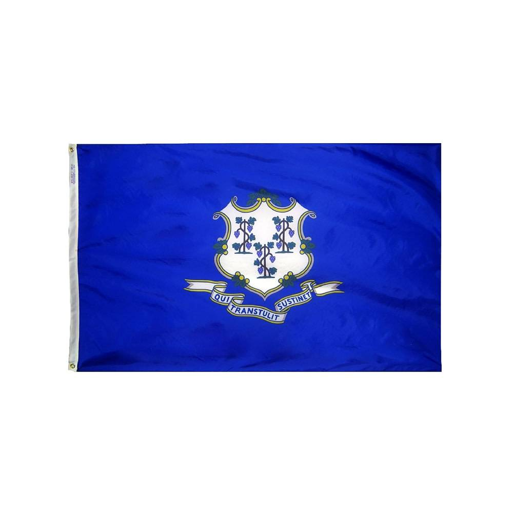 12x18 in. Connecticut Nautical Flag