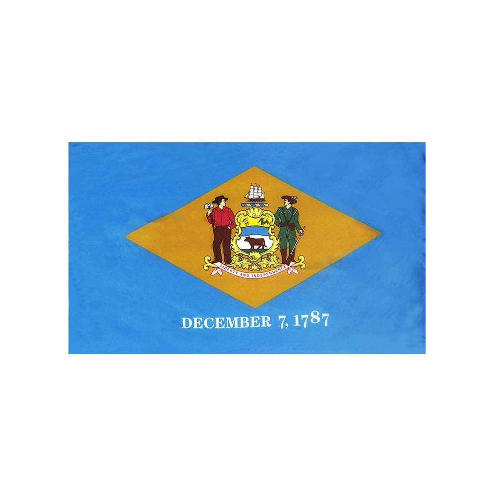 Delaware Flag with Polesleeve