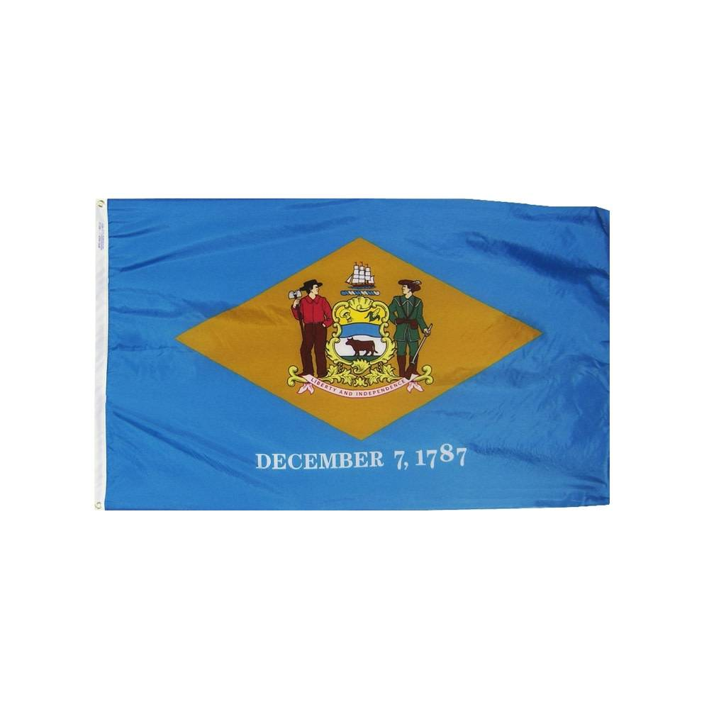12x18 in. Delaware Nautical Flag