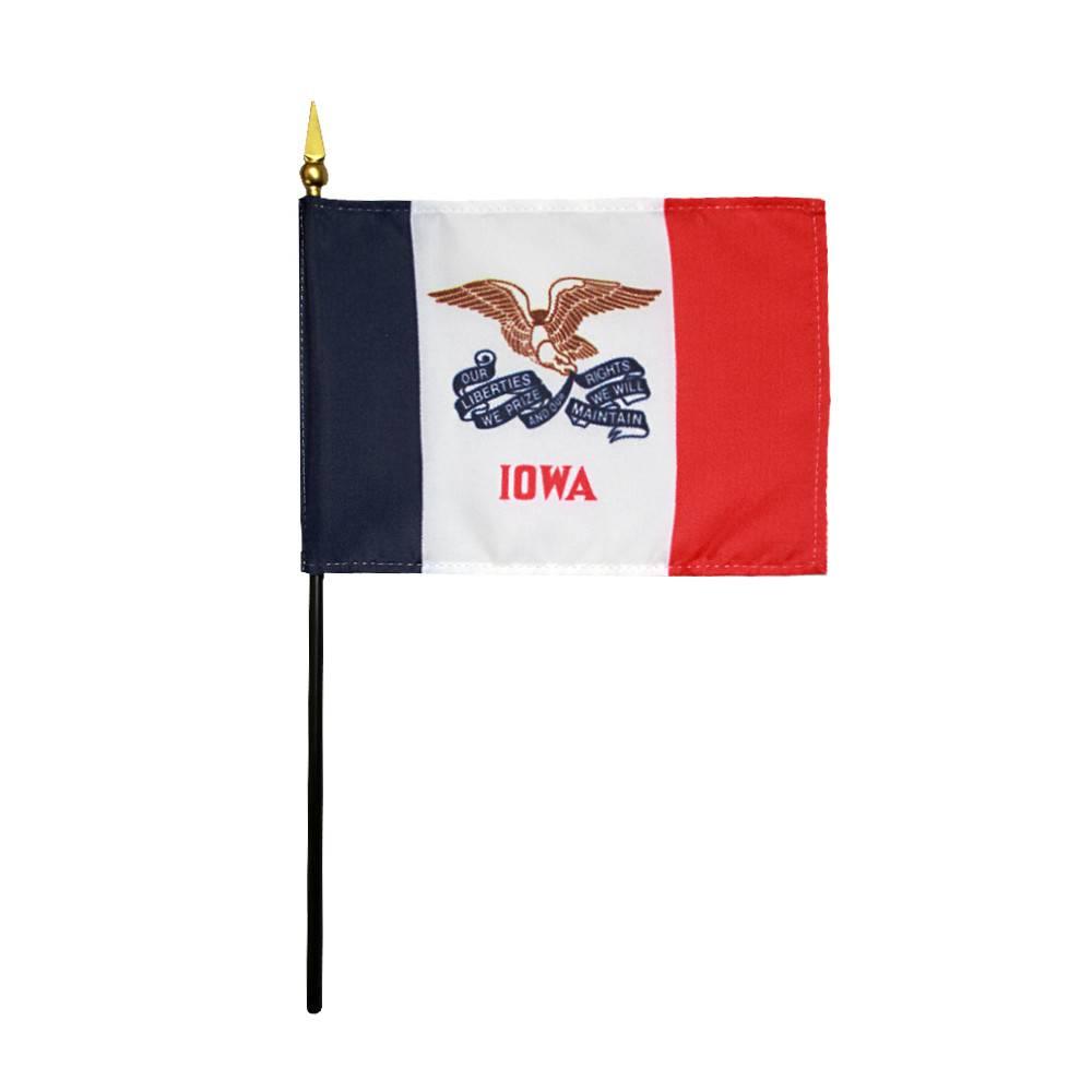 Iowa Stick Flag