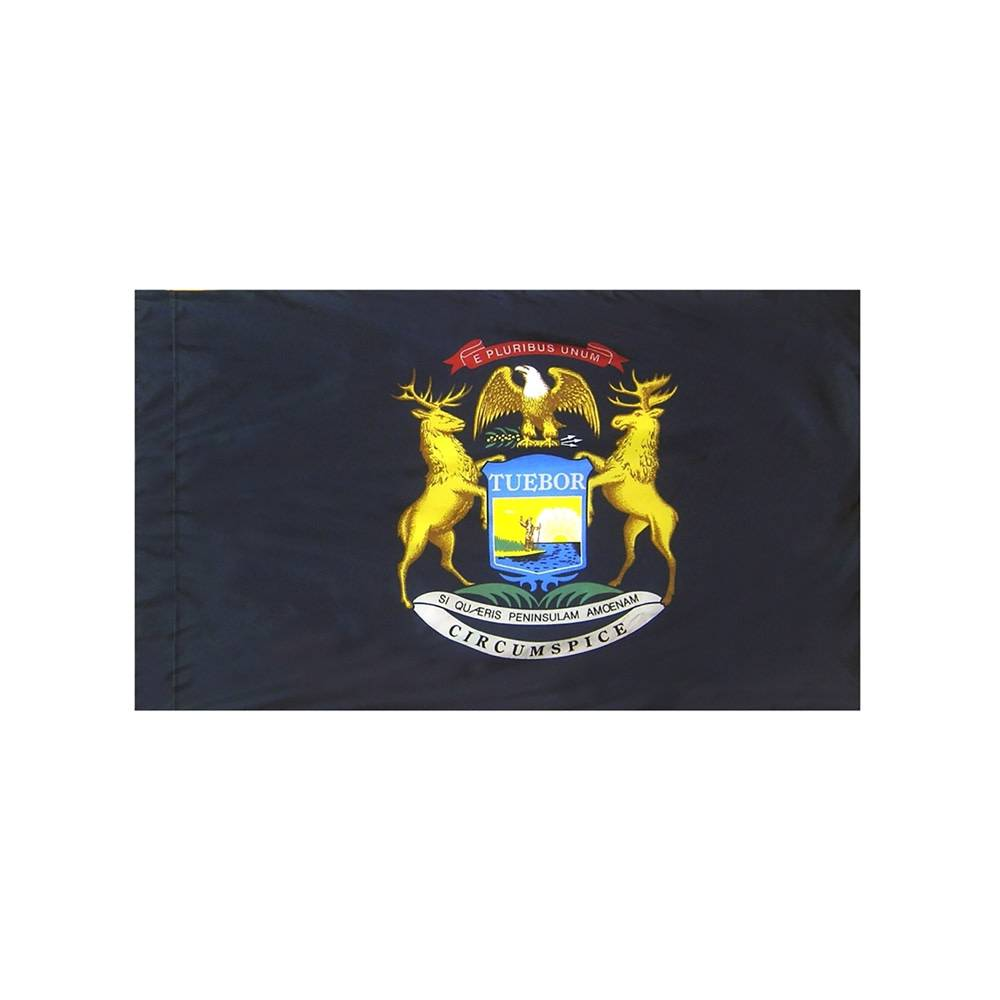 Michigan Flag with Polesleeve