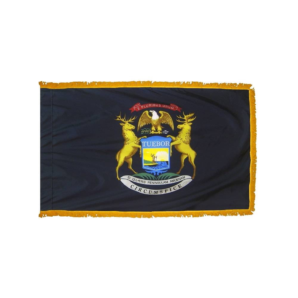 Michigan Flag with Polesleeve & Fringe