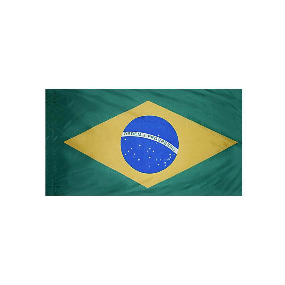 Brazil Flag with Polesleeve