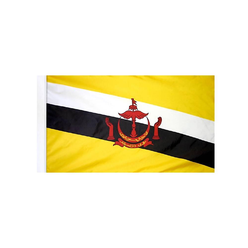 Brunei Flag with Polesleeve