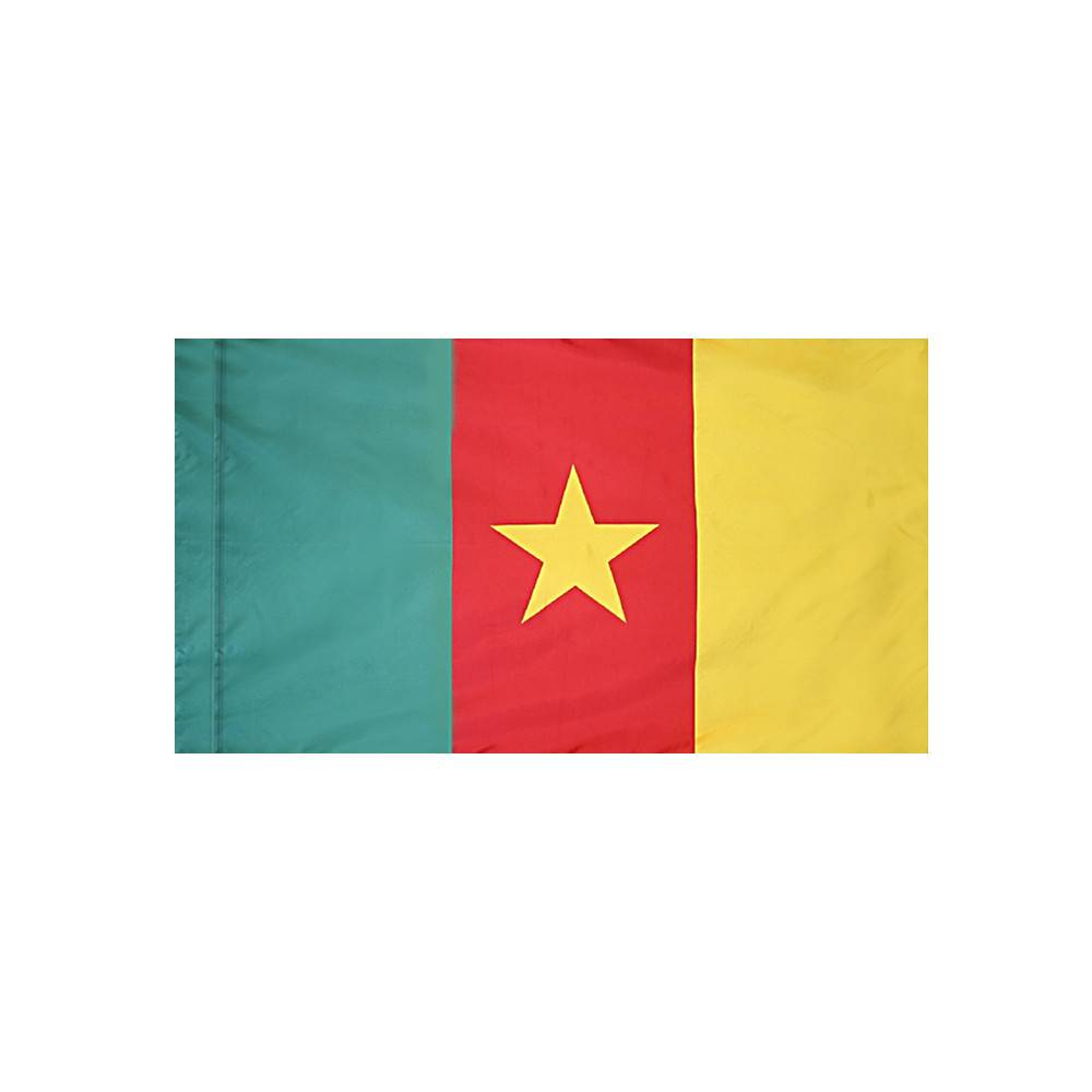 Cameroon Flag with Polesleeve