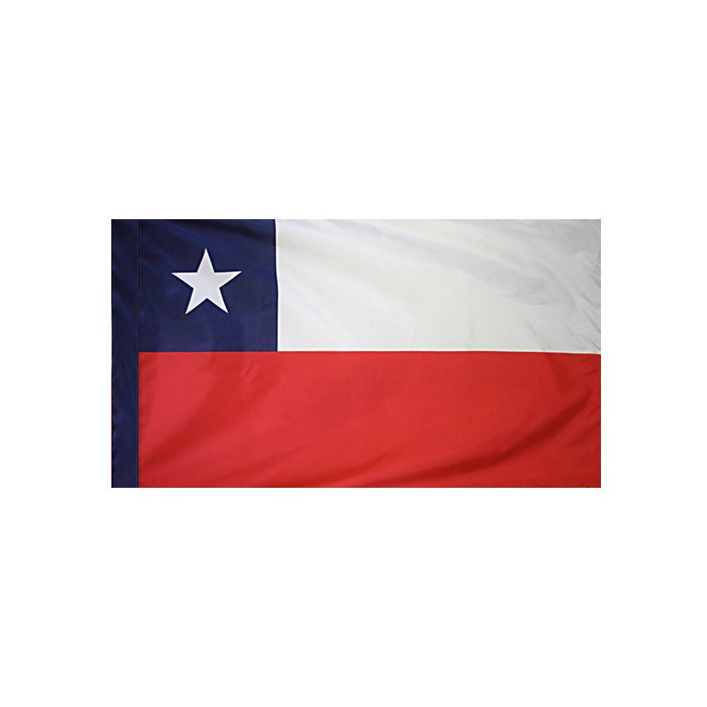 Chile Flag with Polesleeve