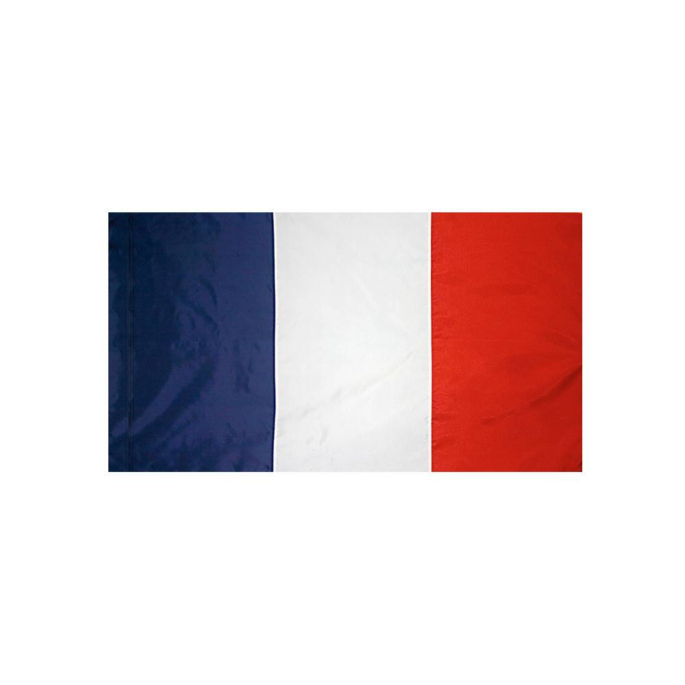 France Flag with Polesleeve