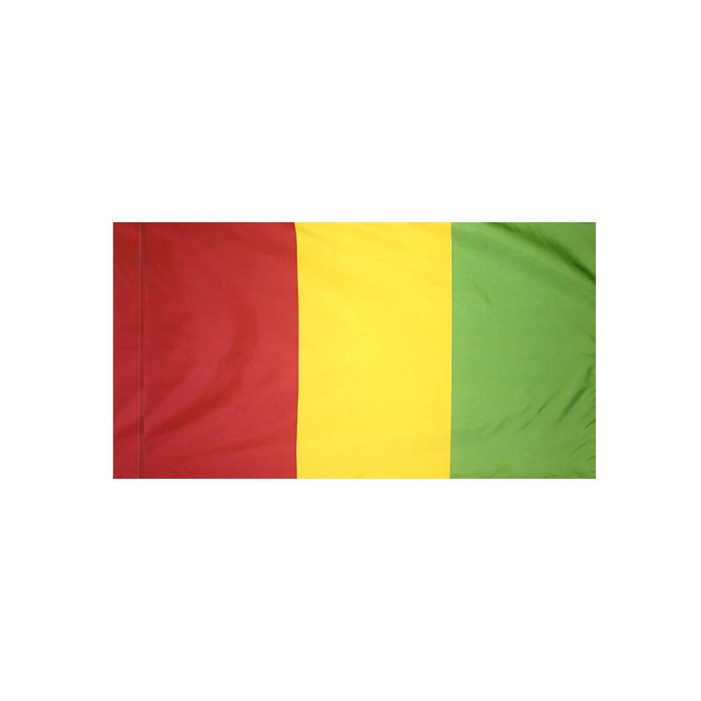 Guinea Flag with Polesleeve