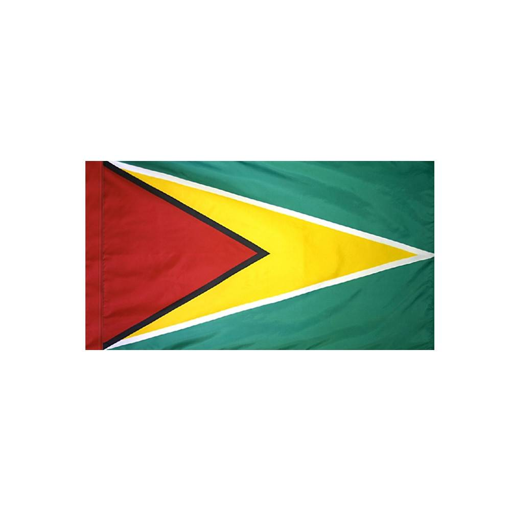 Guyana Flag with Polesleeve