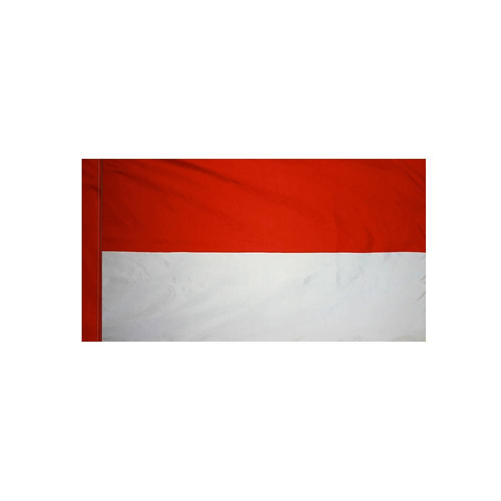 Monaco Flag with Polesleeve