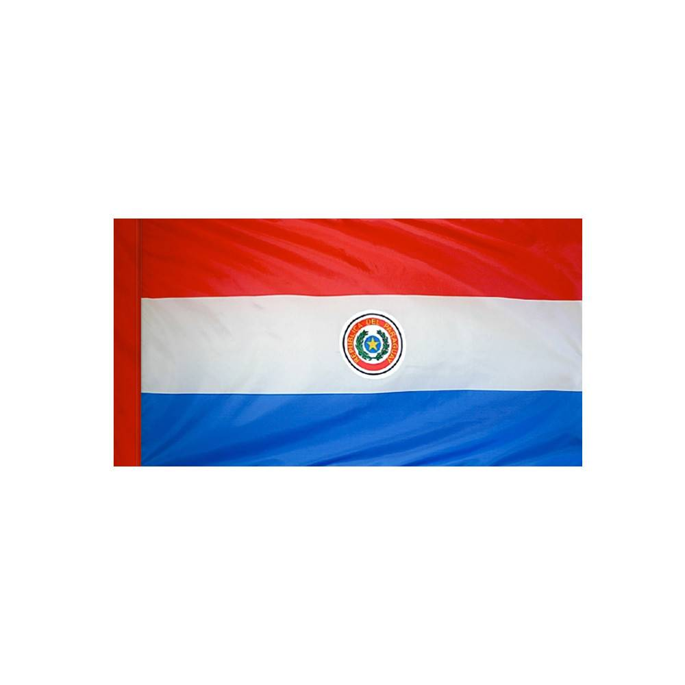 Paraguay Flag with Polesleeve