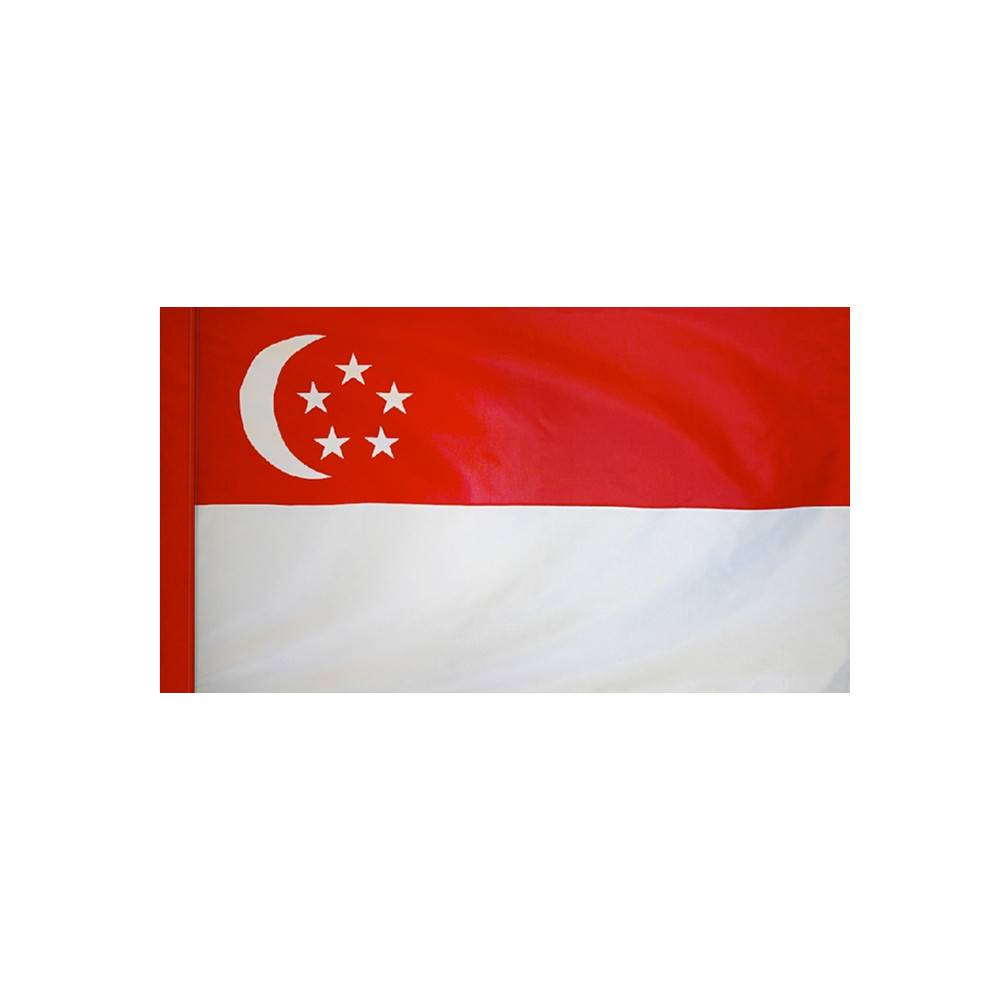 Singapore Flag with Polesleeve