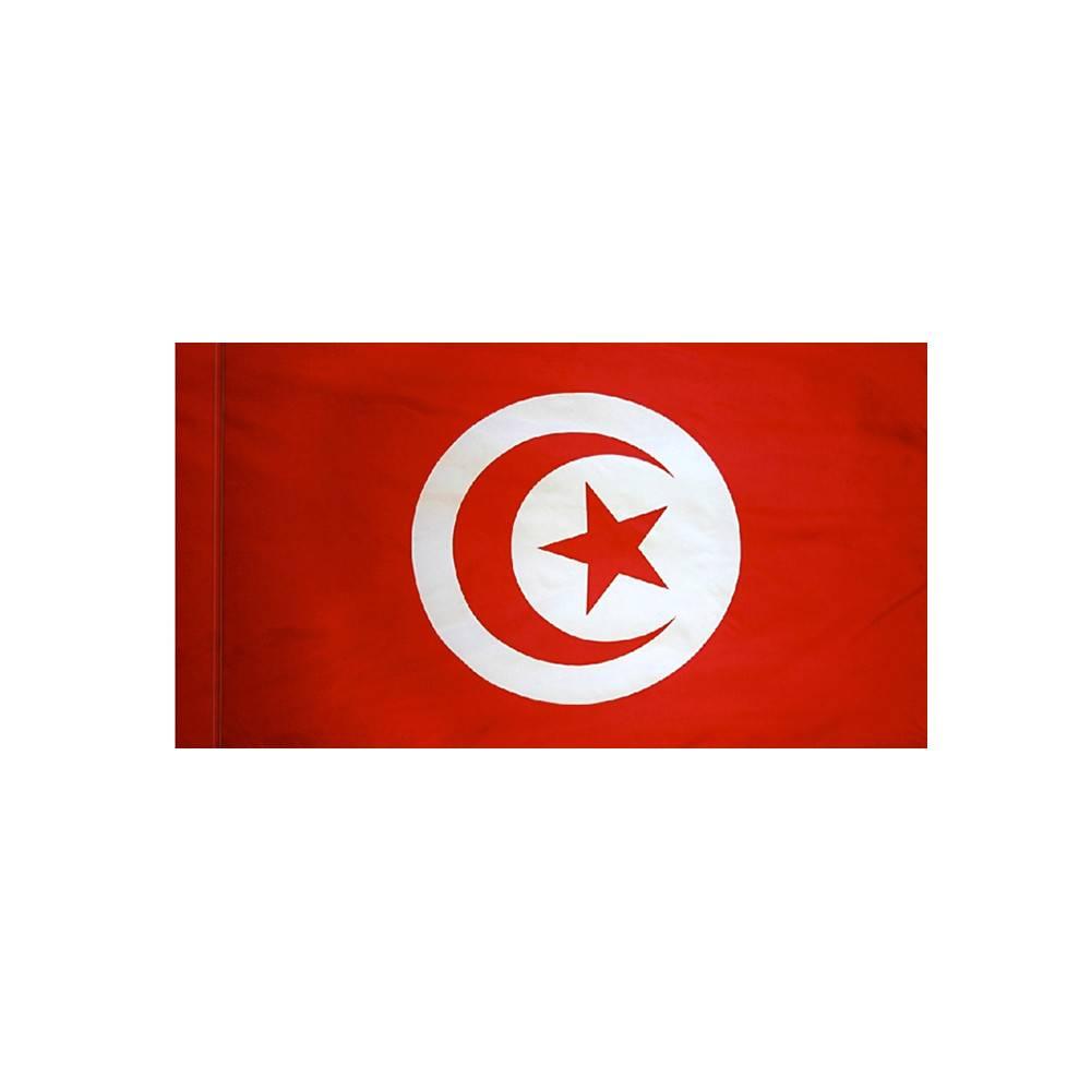 Tunisia Flag with Polesleeve
