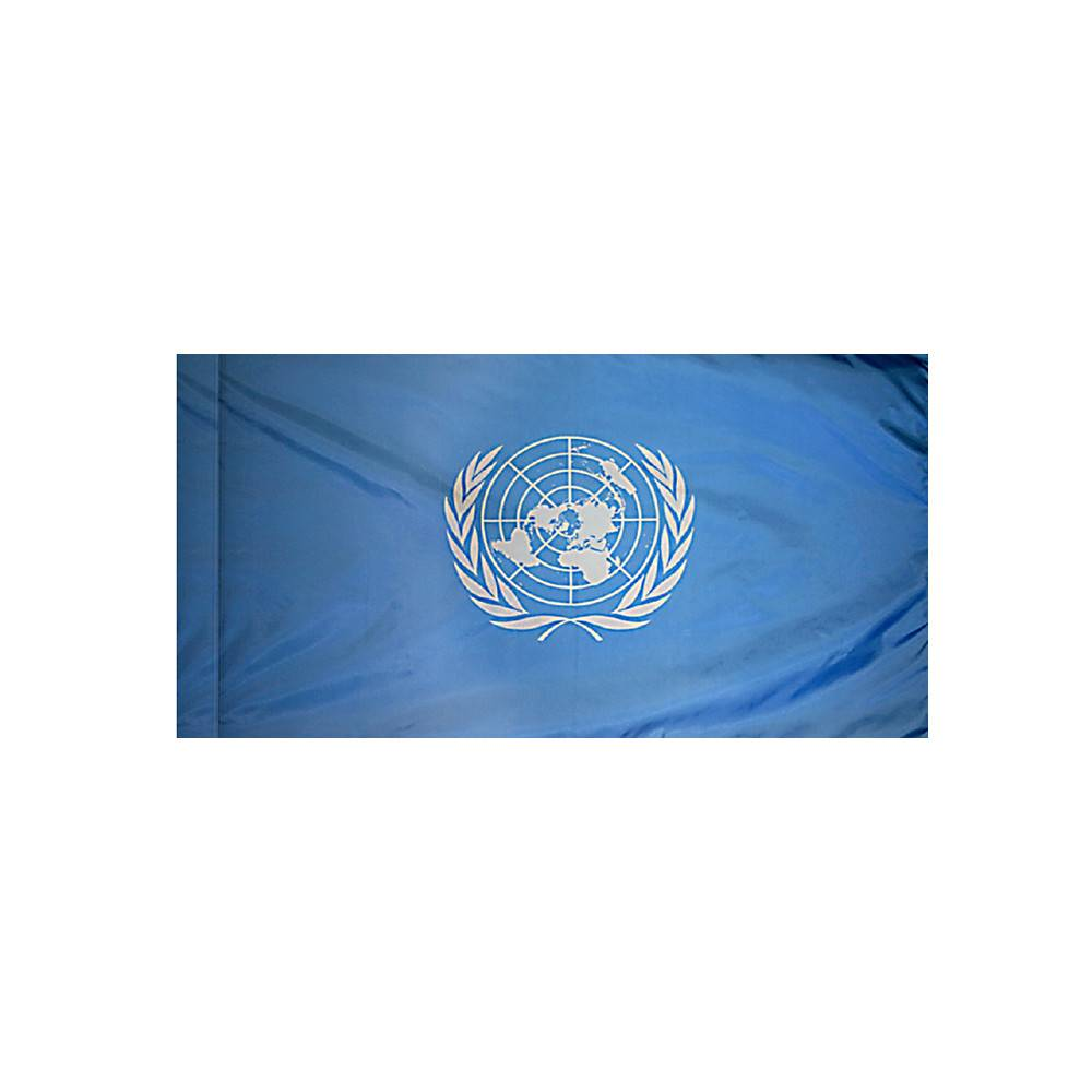United Nations Flag with Polesleeve