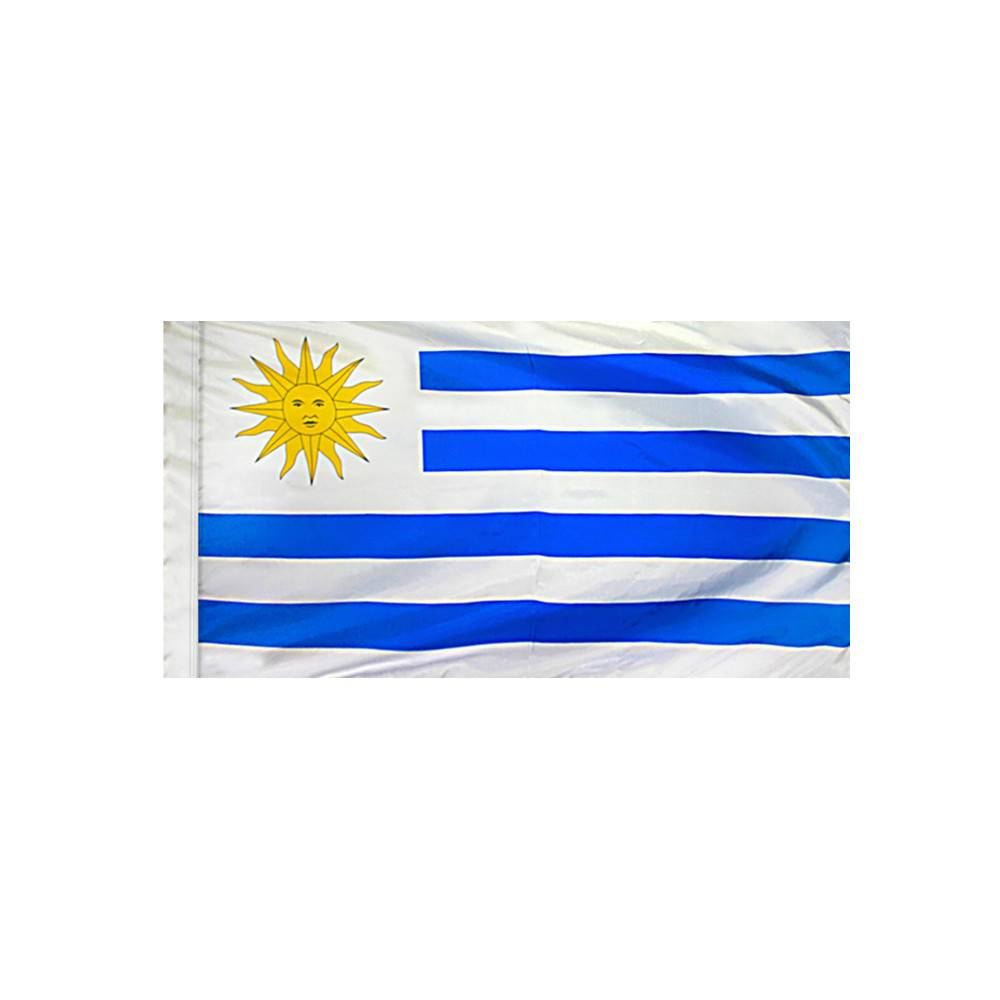 Uruguay Flag with Polesleeve