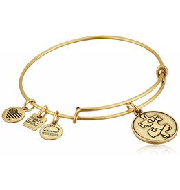 Alex and Ani Charity By Design, Piece of the Puzzle EWB, RG