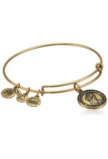 Alex and Ani **Saint Christopher, EWB, RG
