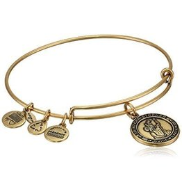 Alex and Ani Saint Christopher, EWB, RG