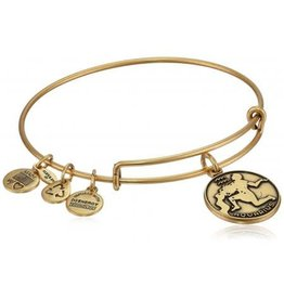 Alex and Ani Aquarius II RG