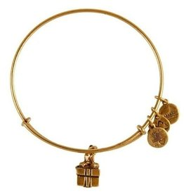 Alex and Ani Charity By Design, Gift Box EWB, RG
