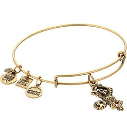 Alex and Ani Charity By Design, Monkey EWB, RG