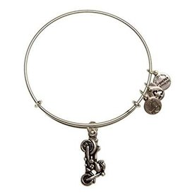 Alex and Ani Charity By Design, Motorcycle EWB, RS