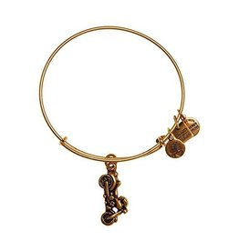 Alex and Ani Charity By Design, Motorcycle EWB, RG