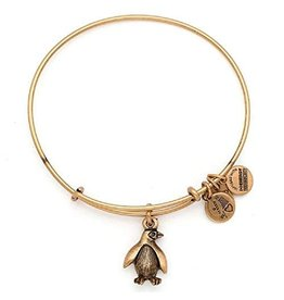 Alex and Ani Charity By Design, Penguin EWB, RG