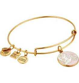 Alex and Ani Charity By Design, Special Delivery Pink EWB, RG