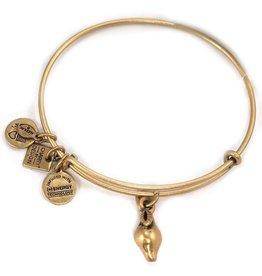 Alex and Ani Charity By Design, Zest for Life EWB, RG