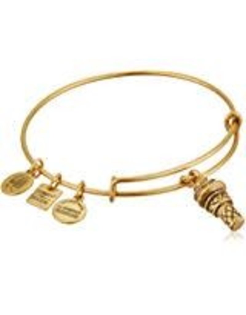 Alex and Ani **Charity By Design, Sweet Treats EWB, RG