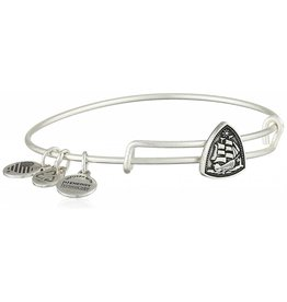 Alex and Ani Steady Vessel Slider, RS