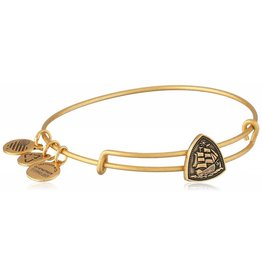 Alex and Ani Steady Vessel Slider, RG