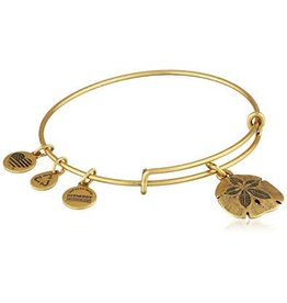 Alex and Ani Sand Dollar, EWB RG